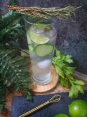 Best Keto Cucumber Gin Cocktail