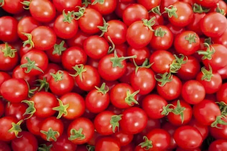 Are Cherry Tomatoes Keto